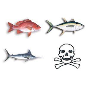 Είδη ψαρέματος - FISH DECALS